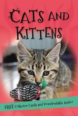Book cover for It's all about... Cats and Kittens